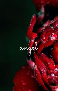 angel. h.s ✔️ cover