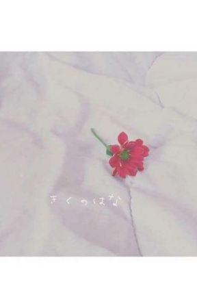 Beauty Love || ❤ Real Love ❤ by taeiehyeongghii