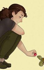   Shells  A Lams Fanfiction by Savvy943