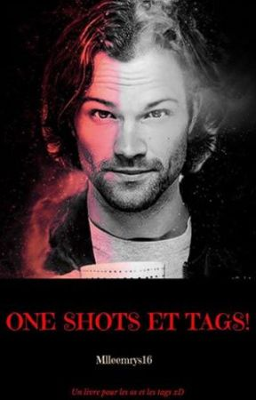 One Shots et Tags ! by AikoHell66