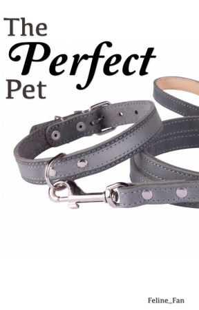 The Perfect Pet by Feline_Fan