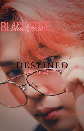 black rose♞yoonmin♟ by sslurringsugaa