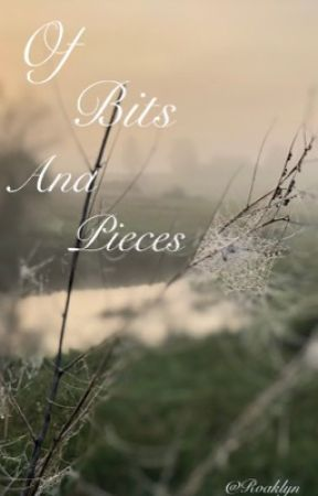 Of bits and pieces by Roaklyn