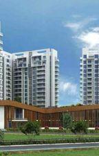 Ambience Creacions 2 BHK Luxury Apartment in Sector 22 Gurgaon by rajkumaridixit