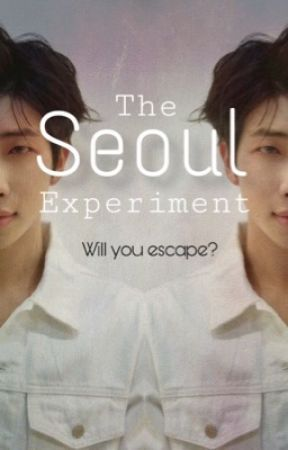 The Seoul Experiment by OnionsWithLegs
