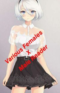 Various Females X Male Reader (Open Request) cover