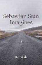 Sebastian Stan and characters imagines by ashtin1982