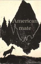 American Mate door YoxxxNo