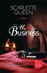The Unlikely Business (Completed) cover