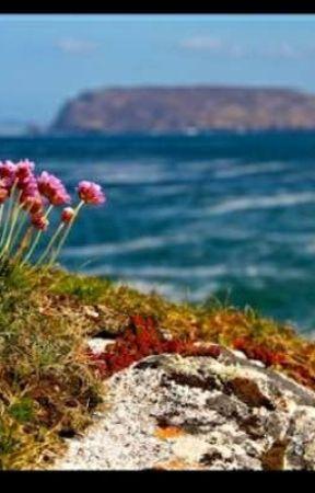 Akdeniz by maviolympos