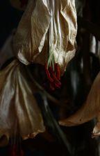 Un giglio appassito. by DraloraSthis