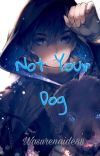 Not Your Dog cover