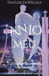 Anjo Meu cover