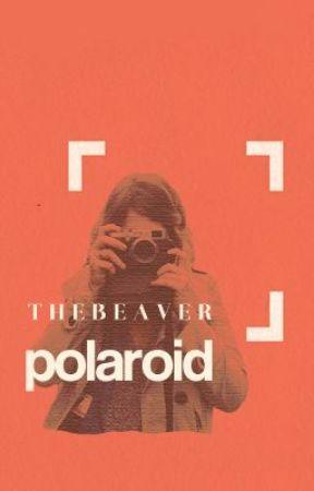 Polaroid by thebeaver