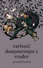 various! danganronpa x reader! by pocketPoems