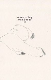 wandering wanderer  cover