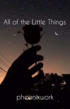 All of the Little Things *UNDER EDITING* by pheonixwork
