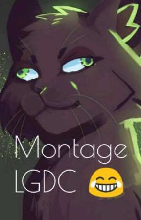 • Mes Montages LGDC • by AileDeMesange