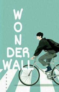 Wonderwall cover