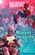 Marvel Imagines x Reader by DOGERMAN123