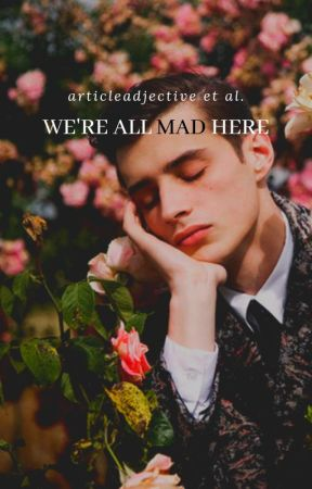 We're All Mad Here by ArticleAdjective