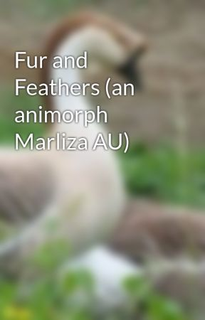 Fur and Feathers (an animorph Marliza AU) by Http-Goose