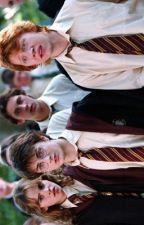 Harry Potter Boyfriend Scenarios by MeliodasWaifu