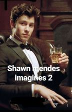shawn mendes imagines 2 by paticulartaste_