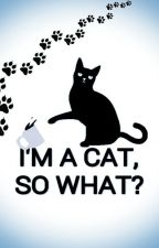 I'm a cat, so what? by TittaCallo