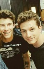 Charlie Puth & Shawn Mendes One Shots by roxy639
