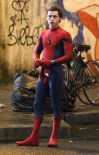 (Spider-Man x venom reader) cover