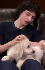 Imagines | Finn Wolfhard & Characters | by 1-800-CLOUTT