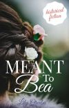Meant to Bea cover