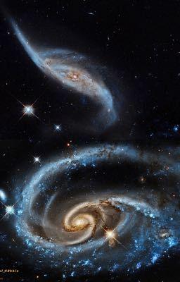 Đọc truyện Cửa hàng dị vật đa vũ trụ