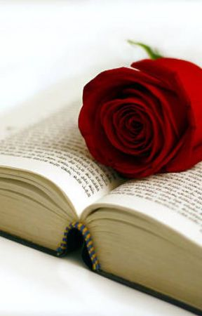 Poemas empolvados  #ZelAwards2019 by VardanaTheyra
