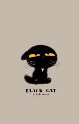 Đọc truyện [YOONMIN] Black Cat.