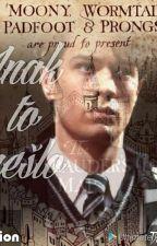 Inak to nešlo (Pokračovanie Keby Bolo Všetko Inak - HP Fanfiction) od grindelwaldova13
