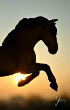 Horse Heart❤ by __night__sky__