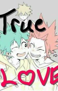 °•~+True Love+~•° cover