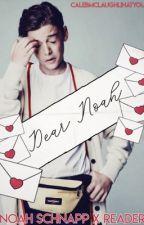 Dear Noah, (Noah Schnapp X Reader) by okayzukka