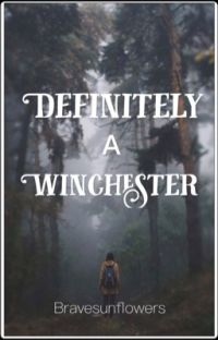 Definitely A Winchester {1} cover
