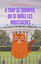 A trop se Trumper, on se brûle les moustaches | Nouvelle by Myfanwi