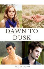 Dawn to Dusk by shellyc0
