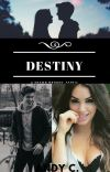 Destiny - Shawn Mendes cover
