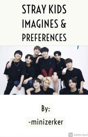 Stray Kids Imagines and Preferences by minizerker-