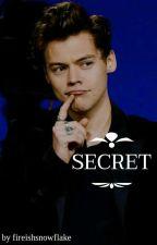Secret | h.s by fireishsnowflake