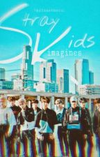 STRAY KIDS IMAGINES.  by kyliesthetic