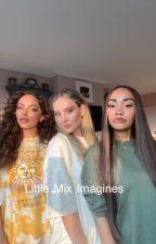 Little Mix Imagines (member x female reader)  by gayforddlovato