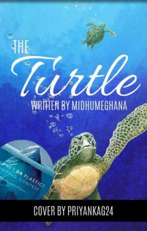 The Turtle by midhumeghana
