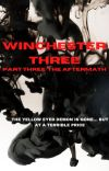 The Winchester Three (S3): The Aftermath cover